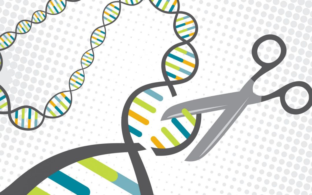 CRISPR Technology gains Merck two more patents