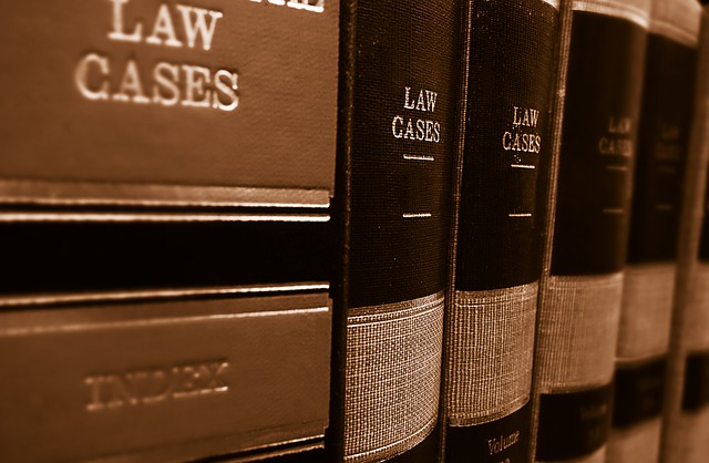 Article of the week #2: German case law on infringement and validity: Update on notable decisions in 2017/2018
